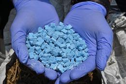 Phát hiện 17 kg ma túy dạng đá được 'ngụy trang' trong các gói trà
