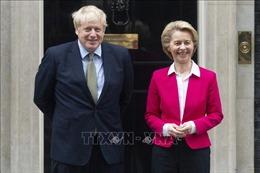 EC kêu gọi Anh hướng tới một thỏa thuận thương mại  'tham vọng'
