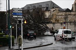 Bão Dennis nối tiếp bão Ciara hoành hành tại Anh và Pháp