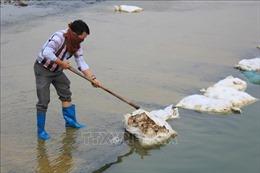 Ngổn ngang xác gia cầm tại chân đập Lip, Thái Nguyên