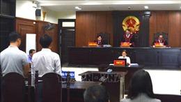 Vụ công ty Vipico kiện UBND TP Đà Nẵng: Giữ nguyên bản án sơ thẩm