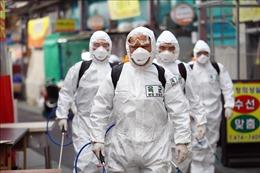 Hàn Quốc ghi nhận 293 ca nhiễm mới SARS-CoV-2, tổng số ca nhiễm vượt quá 5.600 ca