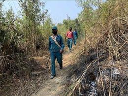 Gian nan phòng, chống cháy rừng trong mùa khô