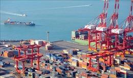 LHQ dự báo GPD khu vực châu Á - Thái Bình Dương giảm 0,8% do dịch bệnh