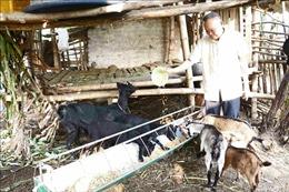 Già làng tiên phong vận động đồng bào Thổ xây dựng nông thôn mới