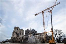 Ngổn ngang năm đầu phục dựng Nhà thờ Đức Bà Paris