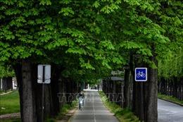 Xe đạp - lựa chọn của các đô thị Pháp sau phong tỏa?