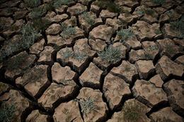 Khô hạn trầm trọng nhất tại miền Tây nước Mỹ trong hơn 1.000 năm qua
