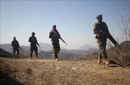 Lực lượng chính phủ Afghanistan truy quét các phần tử Taliban ở miền Đông