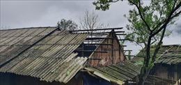 Hoa màu dập nát, hàng trăm ngôi nhà bị hư hại do dông lốc kèm mưa đá tại Đà Bắc
