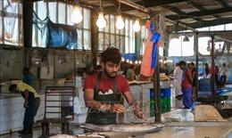 WB dự báo lượng kiều hối của Ấn Độ giảm mạnh
