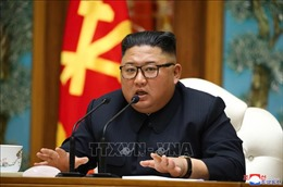 Bộ trưởng Thống nhất Hàn Quốc: Nhà lãnh đạo Triều Tiên vẫn làm việc bình thường