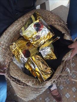 Bộ đội Biên phòng bắt 1 đối tượng, thu giữ hơn 4kg ma túy