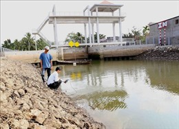 Xâm nhập mặn ở Đồng bằng sông Cửu Long tăng dần