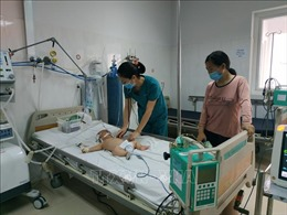 Đắk Lắk ghi nhận hai trường hợp mắc viêm não Nhật Bản
