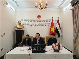 Hội thảo trực tuyến về Chủ tịch Hồ Chí Minh tại Ai Cập