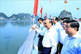 Thủ tướng dự Lễ khánh thành cầu Bài Thơ và đường bao biển Trần Quốc Nghiễn