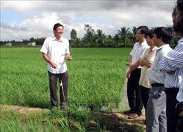 Nâng cao năng lực nghiên cứu, sản xuất giống cây trồng, vật nuôi