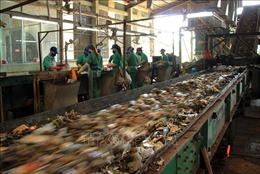 Ký kết hợp tác triển khai các 'giải pháp xanh'cho TP Hồ Chí Minh