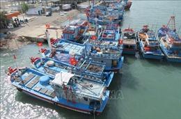 Nhiều tàu cá ở Ninh Thuận chờ được cấp bổ sung hạn ngạch để vươn khơi