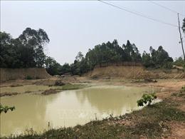 Lãnh đạo Hà Nội chỉ đạo kiểm tra việc khai thác đất tại Ba Vì do TTXVN phản ánh