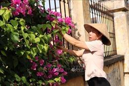 Công nhận huyện Lương Tài (Bắc Ninh) đạt chuẩn nông thôn mới