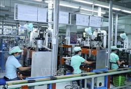 Những gam màu sáng cho kinh tế Việt Nam