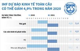 IMF dự báo kinh tế toàn cầu có thể giảm 4,9% trong năm 2020