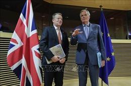 Anh và EU thừa nhận vẫn còn bất đồng lớn trong đàm phán hậu Brexit