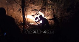 Khám nghiệm hiện trường, làm rõ nguyên nhân cháy rừng tại Nghệ An