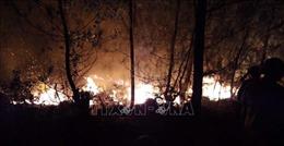 Cơ bản khống chế được đám cháy rừng ở Hà Tĩnh, thiệt hại khoảng 30 ha
