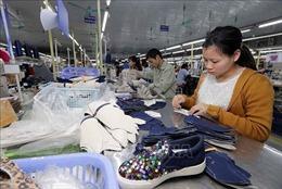 Phát triển ngành da giày Việt Nam trong tình hình mới - Bài cuối: Chủ động đón đầu