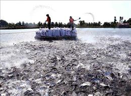 Mở rộng diện tích thủy sản ở các vùng sinh thái