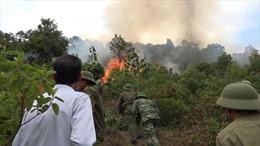 Bổ sung các phương án phòng, chống cháy rừng hiệu quả