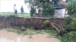 Bạc Liêu báo động tình trạng sạt lở bờ sông, bờ biển mùa mưa bão