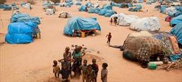 LHQ đóng cửa hai trại tị nạn ở Niger vì lý do an ninh