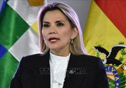 Tổng thống lâm thời Bolivia kêu gọi đối thoại, thảo luận về tổng tuyển cử