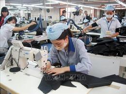318 doanh nghiệp tại TP Hồ Chí Minh được tạm dừng đóng BHXH