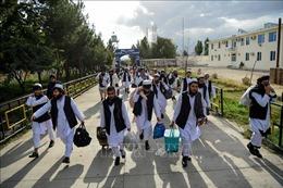 Afghanistan thả 400 tù nhân Taliban, mở đường cho đàm phán hòa bình