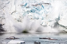 Greenland mất lượng băng kỷ lục trong năm 2019