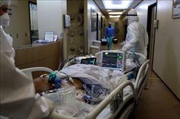 Thế giới ghi nhận trên 23,1 triệu ca mắc, 804.348 ca tử vong do COVID-19