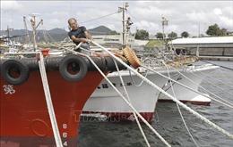 Nhật Bản dồn sức ứng phó siêu bão 'mạnh nhất trong nhiều thập kỷ'