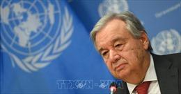 Hòa đàm Afghanistan - Taliban: Cộng đồng quốc tế kêu gọi các bên nắm bắt cơ hội hòa bình