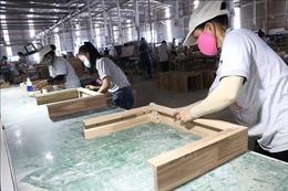 ADB: Triển vọng kinh tế của Việt Nam trong trung hạn và dài hạn vẫn tích cực