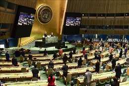 Tuần lễ Cấp cao Đại hội đồng Liên hợp quốc khóa 75 diễn ra từ ngày 21/9 - 2/10