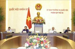 Tán thành việc thành lập Văn phòng Đoàn đại biểu Quốc hội và HĐND cấp tỉnh