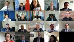 Việt Nam và HĐBA LHQ: Việt Nam ủng hộ Chính phủ Syria và phe đối lập đàm phán