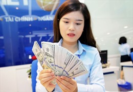 Tỷ giá trung tâm sáng 6/10 giảm 4 đồng