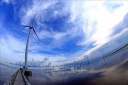 Khởi công giai đoạn 2 Nhà máy điện gió Đông Hải 1
