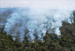 Brazil triển khai lực lượng đối phó hỏa hoạn tại vùng đất ngập nước Pantanal